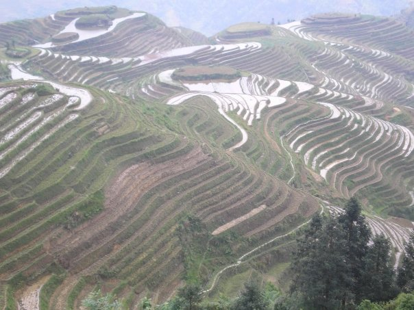 A scene from my first ever solo travel experience: the rice terraces of Longsheng, Guangxi, China