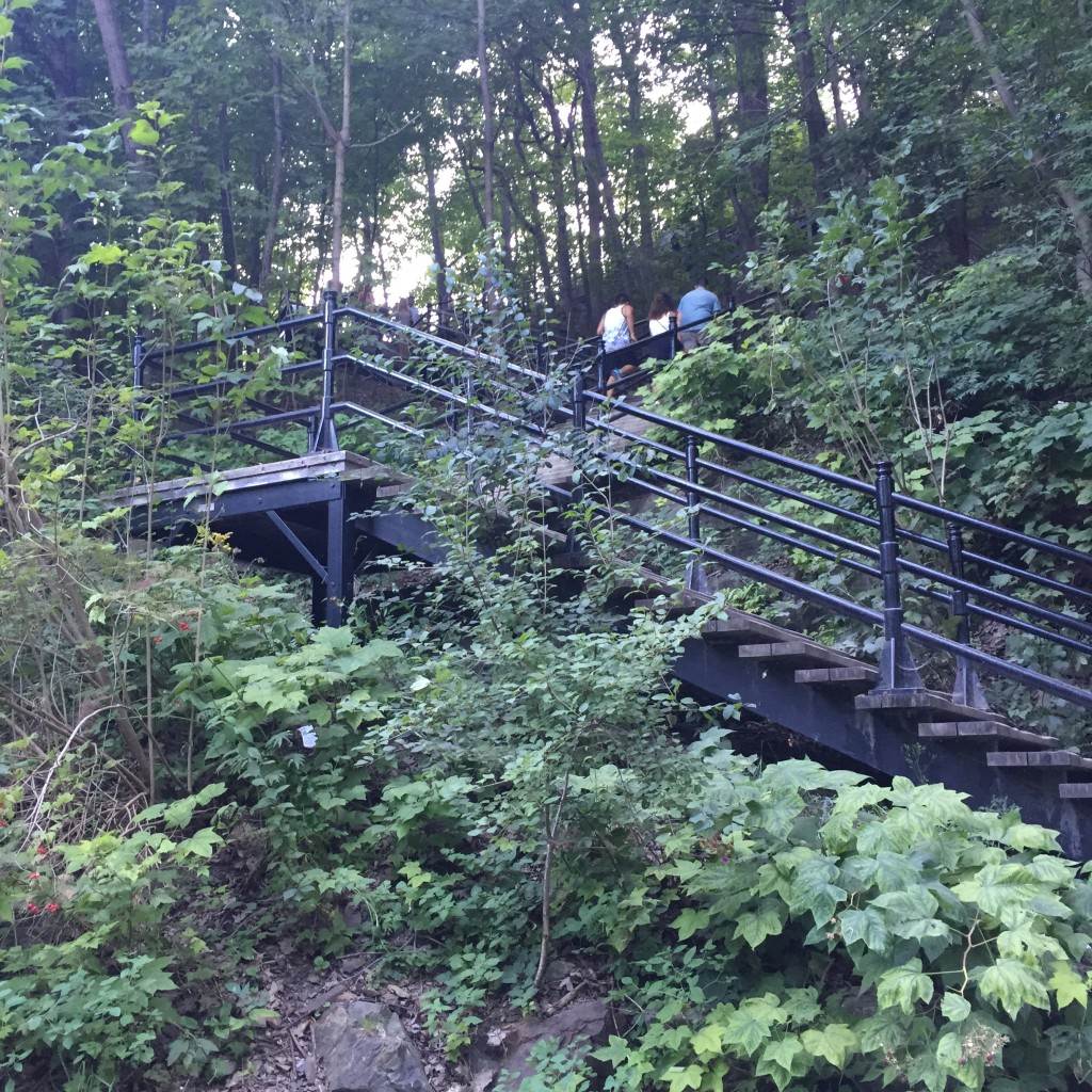 Staircase at Mount Royal Park