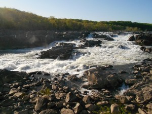 Spring time hiking at Great Falls Park